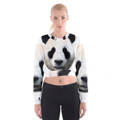 Panda Face Cropped Sweatshirt