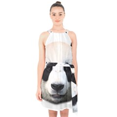 Panda Face Halter Collar Waist Tie Chiffon Dress