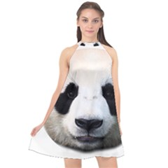 Panda Face Halter Neckline Chiffon Dress