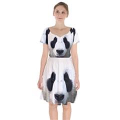 Panda Face Short Sleeve Bardot Dress