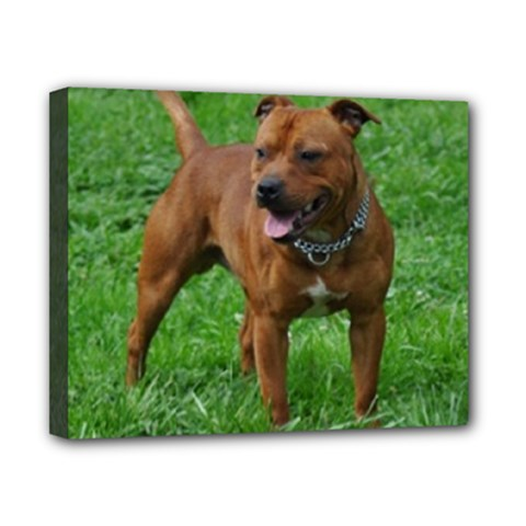 4 Full Staffordshire Bull Terrier Canvas 10  X 8