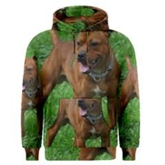 4 Full Staffordshire Bull Terrier Men s Pullover Hoodie