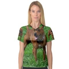4 Full Staffordshire Bull Terrier V Neck Sport Mesh Tee