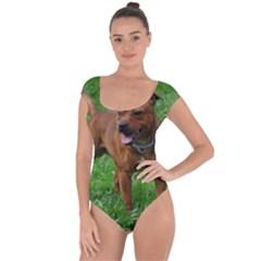 4 Full Staffordshire Bull Terrier Short Sleeve Leotard