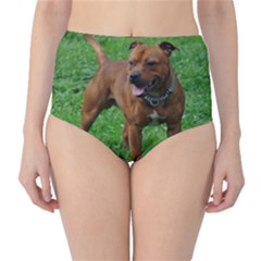 4 Full Staffordshire Bull Terrier High Waist Bikini Bottoms