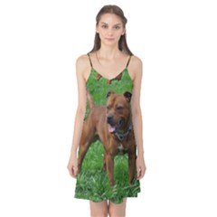 4 Full Staffordshire Bull Terrier Camis Nightgown