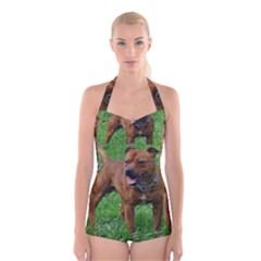 4 Full Staffordshire Bull Terrier Boyleg Halter Swimsuit