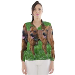 4 Full Staffordshire Bull Terrier Wind Breaker (women)