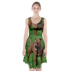 4 Full Staffordshire Bull Terrier Racerback Midi Dress
