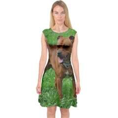 4 Full Staffordshire Bull Terrier Capsleeve Midi Dress