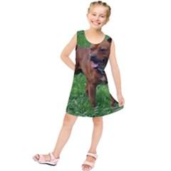 4 Full Staffordshire Bull Terrier Kids  Tunic Dress