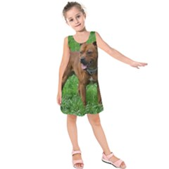 4 Full Staffordshire Bull Terrier Kids  Sleeveless Dress