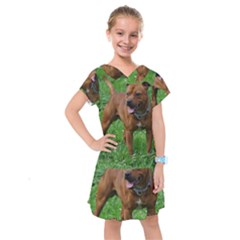 4 Full Staffordshire Bull Terrier Kids  Drop Waist Dress