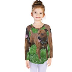 4 Full Staffordshire Bull Terrier Kids  Long Sleeve Tee