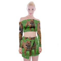 4 Full Staffordshire Bull Terrier Off Shoulder Top With Skirt Set