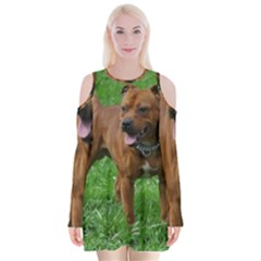 4 Full Staffordshire Bull Terrier Velvet Long Sleeve Shoulder Cutout Dress