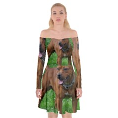 4 Full Staffordshire Bull Terrier Off Shoulder Skater Dress