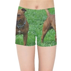 4 Full Staffordshire Bull Terrier Kids Sports Shorts