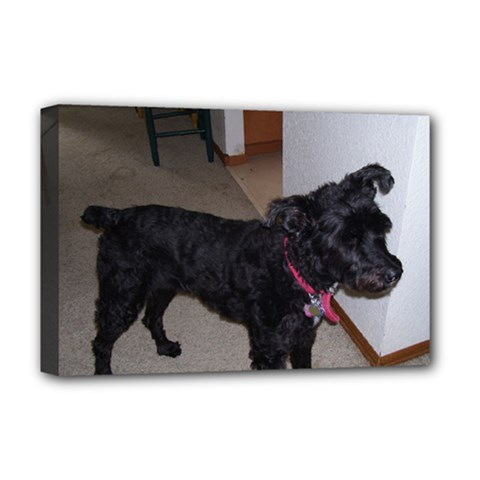 Bouvier Shaved Deluxe Canvas 18  X 12