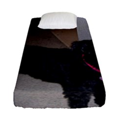 Bouvier Shaved Fitted Sheet (single Size)