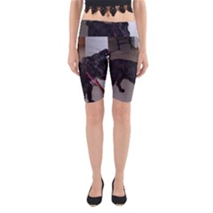 Bouvier Shaved Yoga Cropped Leggings