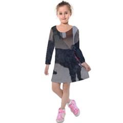 Bouvier Shaved Kids  Long Sleeve Velvet Dress