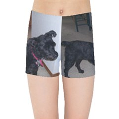 Bouvier Shaved Kids Sports Shorts