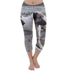 2 Anatolians Capri Winter Leggings