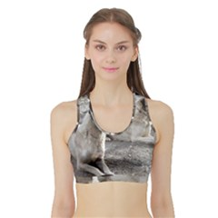 2 Anatolians Sports Bra With Border