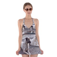 2 Anatolians Halter Swimsuit Dress
