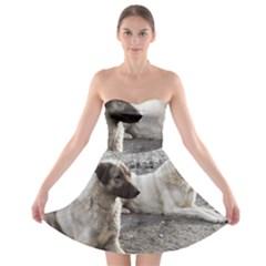 2 Anatolians Strapless Bra Top Dress