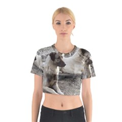 2 Anatolians Cotton Crop Top