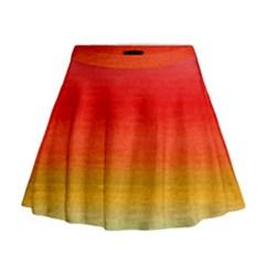 Ombre Mini Flare Skirt