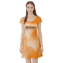 Ombre Short Sleeve Skater Dress