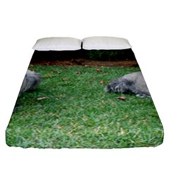 2 Standard Schnauzers Fitted Sheet (queen Size)