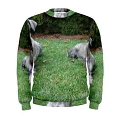 2 Standard Schnauzers Men s Sweatshirt