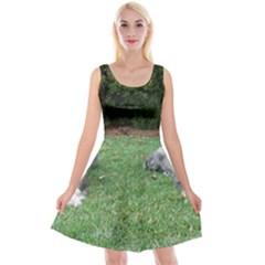 2 Standard Schnauzers Reversible Velvet Sleeveless Dress