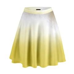 Ombre High Waist Skirt