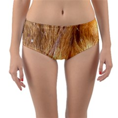 Nova Scotia Duck Tolling Retriever Eyes Reversible Mid Waist Bikini Bottoms