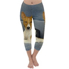 2 Basenjis Capri Winter Leggings