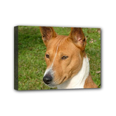 Basenji 2 Mini Canvas 7  X 5