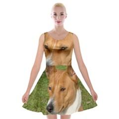 Basenji 2 Velvet Skater Dress