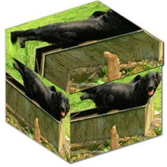 2 Full Flat Coated Retriever Storage Stool 12
