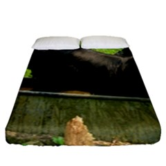 2 Full Flat Coated Retriever Fitted Sheet (queen Size)