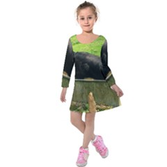 2 Full Flat Coated Retriever Kids  Long Sleeve Velvet Dress