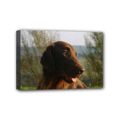 Flat Coated Retriever Mini Canvas 6  X 4