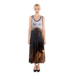 Flat Coated Retriever Sleeveless Maxi Dress