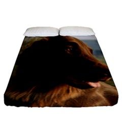 Flat Coated Retriever Fitted Sheet (queen Size)