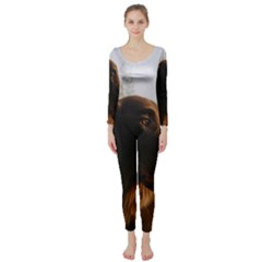 Flat Coated Retriever Long Sleeve Catsuit