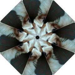 Tibetan Terrier 2 Hook Handle Umbrellas (small)